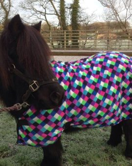 Fleece Horse Rugs